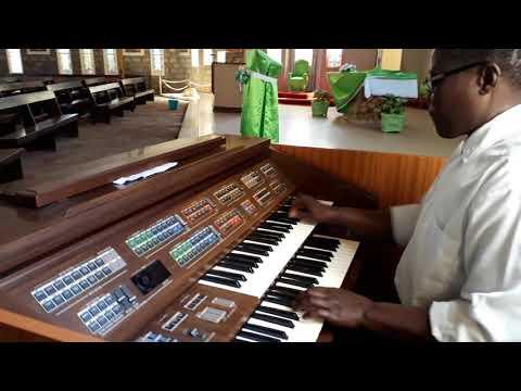 playing catholic song amka twende (organ)