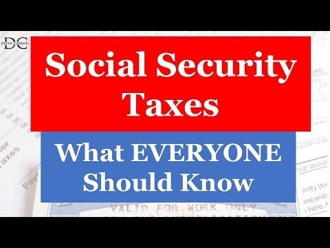 Social Security Taxes: What Everyone Should Know