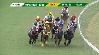 Vidéo de la course PMU PREMIO ALBATROZ