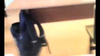 Когда учитель по изо уходит:) :) :)