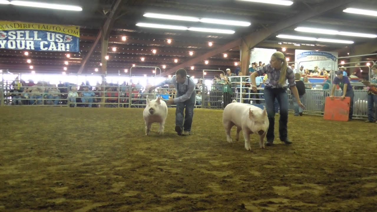 Fort Bend County Fair And Livestock Show 2015
