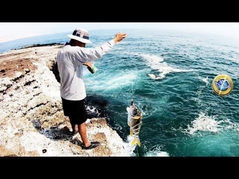 Pesca usando CANGREJOS y Línea de Mano(!) desde Rocas - 4K