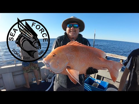 BACK FISHING!! After Shutdown Group Charter Fishing Coral Bay, Rankin, Red Emperor, Ruby Snapper