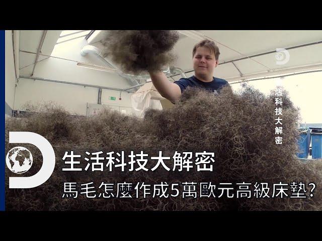 5萬歐元的床墊你敢想像嗎?怎麼從馬毛從零開始製做?  《生活科技大解密》