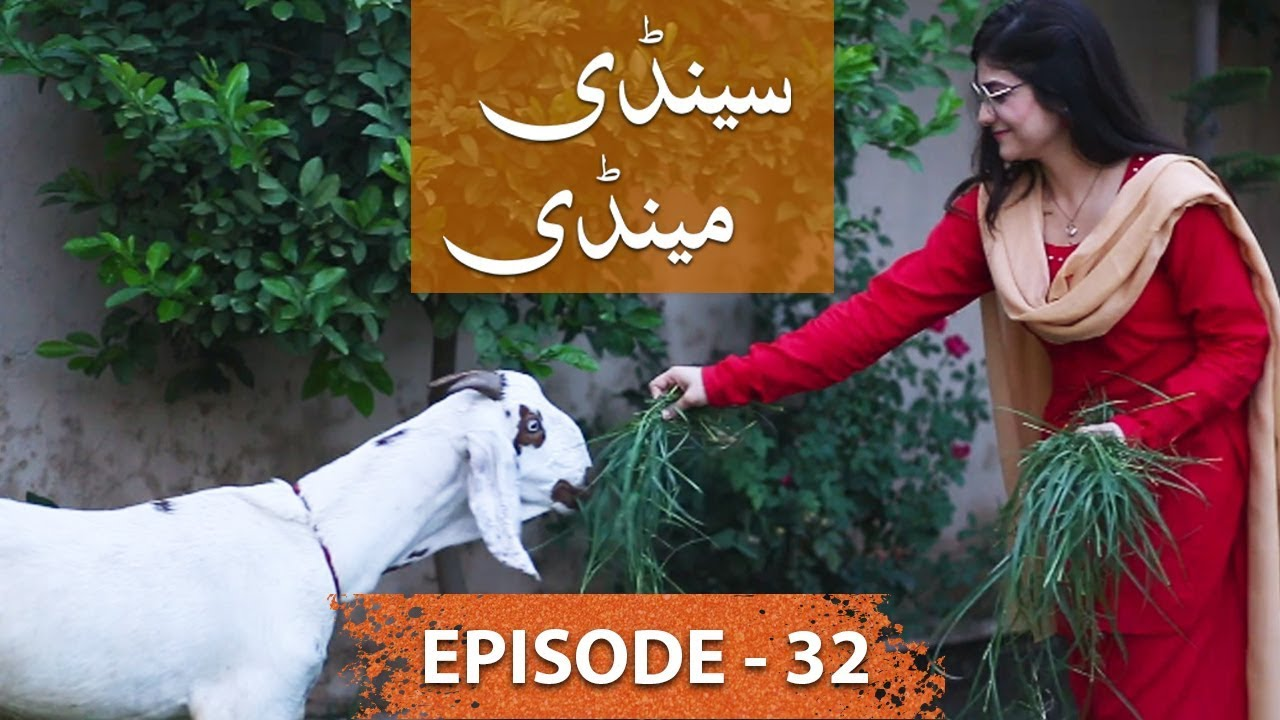 Sandy Mandy Episode 32 - 17 August 2019 LTN