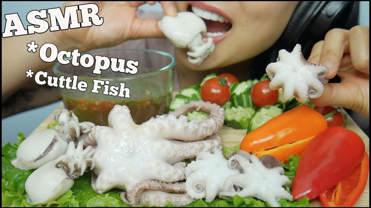 Asmr Octopus Cuttle Fish Extreme Chewy Eating Sounds No Talking Sas Asmr Youtube Submitted 8 months ago by aznazpepito. asmr octopus cuttle fish extreme chewy eating sounds no talking sas asmr