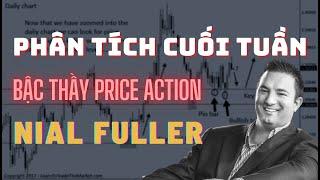 ✅ Cách Phân Tích Thị Trường Vào CUỐI TUẦN Của Nial Fuller - Bậc Thầy Price Action | TraderViet
