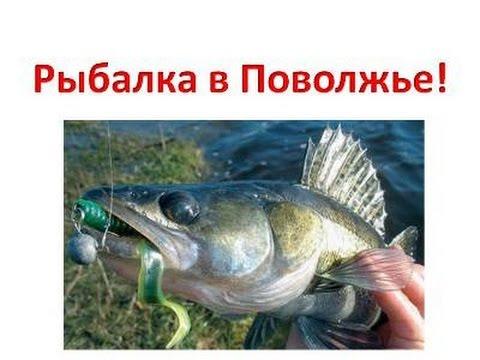 Рыбалка в Поволожье.