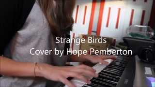 Strange Birds - Cover
