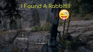 Far Cry 5   How to find Hares, Rabbits Bunnies, All animals