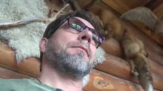 Депрессия, лечение - 1. Антидепрессанты или нейролептики?(Внимание! 11 февраля 2017 года в Москве состоится семинар Цыганская магия и гипноз. Сглаз, порча, проклятие...., 2015-07-13T14:05:02.000Z)