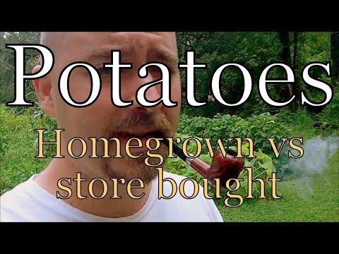 Potatoes: Homegrown vs store bought