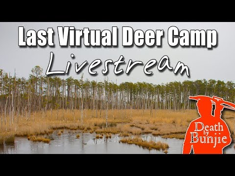 My Thoughts On Sika Deer Hunting In Maryland (Livestream)