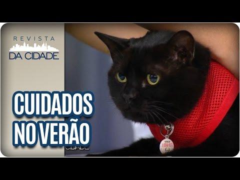 Gatos podem tomar banho? - Revista da Cidade (17/01/17)