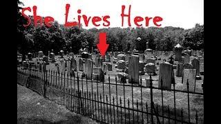 Greenwood Cemetery Investigation