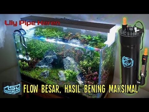 review-diy-filter-canister-dan-lily-pipe-dari-asd-(aquascape-support-design)