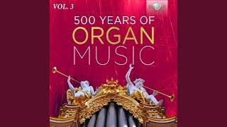 6 Concertos for 2 Organs, Concerto No. 3 in G Major: I. Andantino