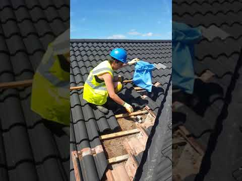 hqdefault - How To Get Rid Of Wasp Nest In Roof Tiles