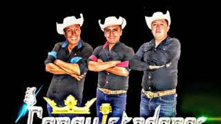 MARIO ORTIZ (nuevo) Conquistadores De La Sierra 2020