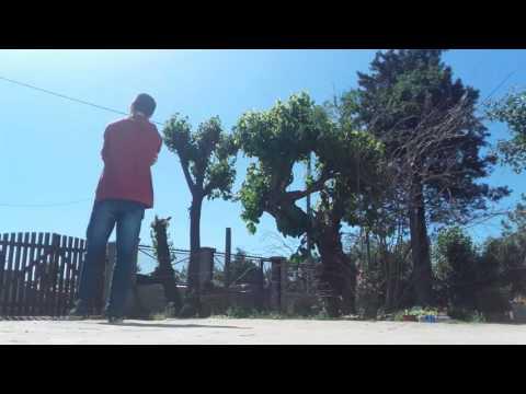 Vine Shuffle #60 | ELEPHANT (de Funkin...