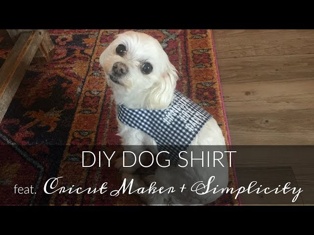 Diy Dog Shirt Tutorial Feat Cricut Maker Simplicity 2393 Inside