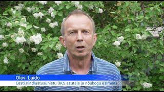 """Olavi Laido kindlustusühistust: """"Eesti riigil on vaja enda kindlustusseltsi"""""""