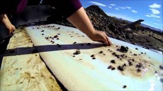 Oregon Sunstone Trip 2013-2