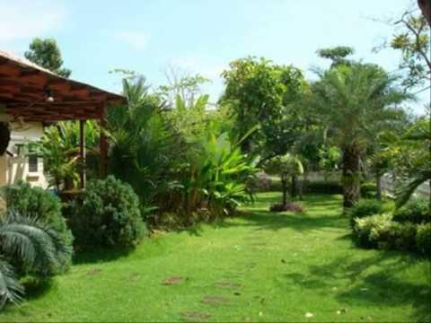 บ้านชั้นเดียวสไตล์บ้านสวน แบบ บ้าน ห้อง ครัว สวย