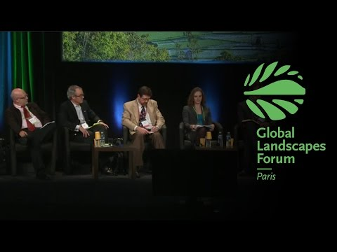 Taking stock of REDD+: Past, present and future GLF 2015