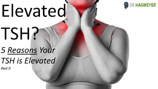 5 Common Reasons Your TSH is Elevated- What Your Doctors Not Telling You About an Elevated TSH