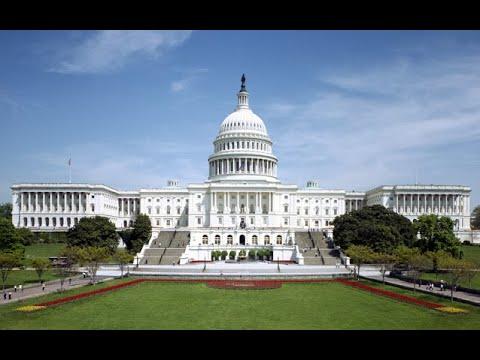 Will Americans be able to criticize the establishment post 2020 ?