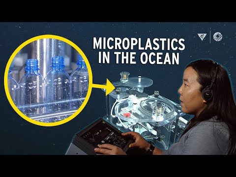 Microplastics In The Ocean Are A Mega Problem: Plastic Pollution Runs Deep In Monterey Bay