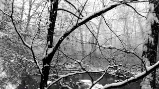 Relaxing Nature Journey & Walkabout #11 - Winter 2013 - Snowing - Snow Sounds, Flowing Water