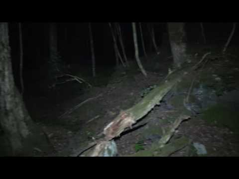 Aokigahara , Solo Ghost Hunt Suicide Forest Japan  Part 1