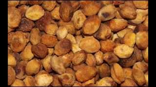 Organic Dried Apricots - Dried Apricots