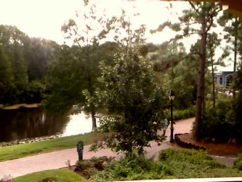 Port Orleans Riverside room view (1446, 2 Sep 2008)
