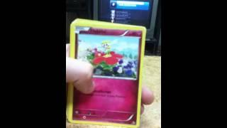 Pokemon unpacking mail from:pokemon123