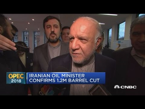 Iranian oil minister confirms 1.2 million barrel oil cut