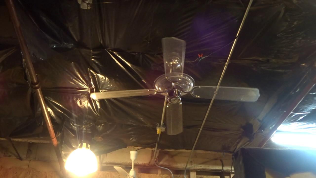 Blue Neon Light Ceiling Fan Likely Design House