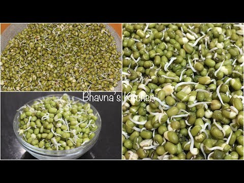 How to Sprout Moong Beans | Seeds Sprouting | Video Recipe | Bhavna's Kitchen