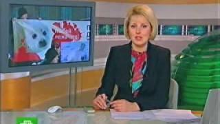 Не бей лежачего!(Акции в защиту бельков - детенышей тюленей - прошли сразу в нескольких городах России. В Мурманске, Иркутске,..., 2010-01-03T17:30:22.000Z)