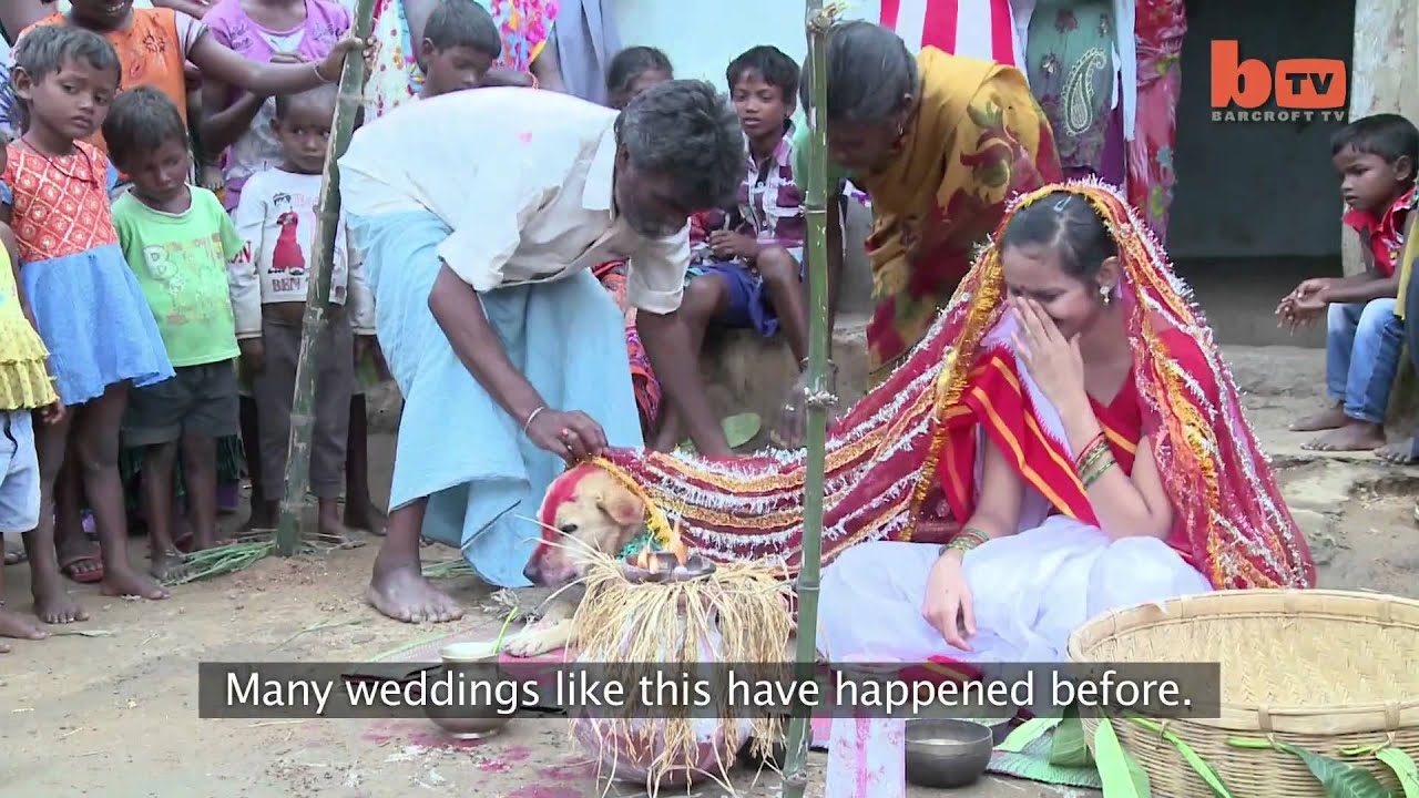indian girl married with dog - youtube