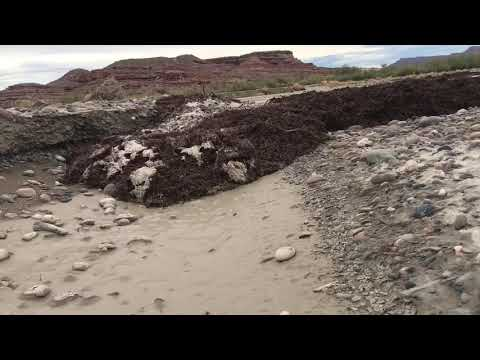 CLOSE-RANGE flash flood intercept on foot in Wahweap Wash, Utah