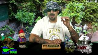 Strain Review W/ Dr Greenthumb - OG Raskal Lemon | BREALTV