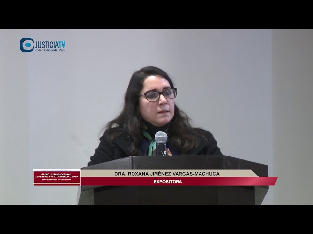 PLENO JURISDICCIONAL DISTRITAL CIVIL COMERCIAL 2019
