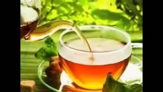Купить монастырский чай в уфе. Видео как купить монастырский чай в уфе