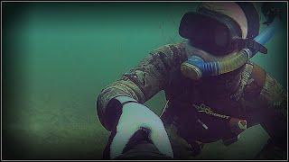Подводная охота Веселовкий карьер Шашлык