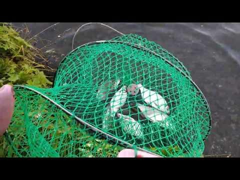 """""""Тихая охота."""" Немного рыбалки(Штанговский пруд близ г. Полевской)"""