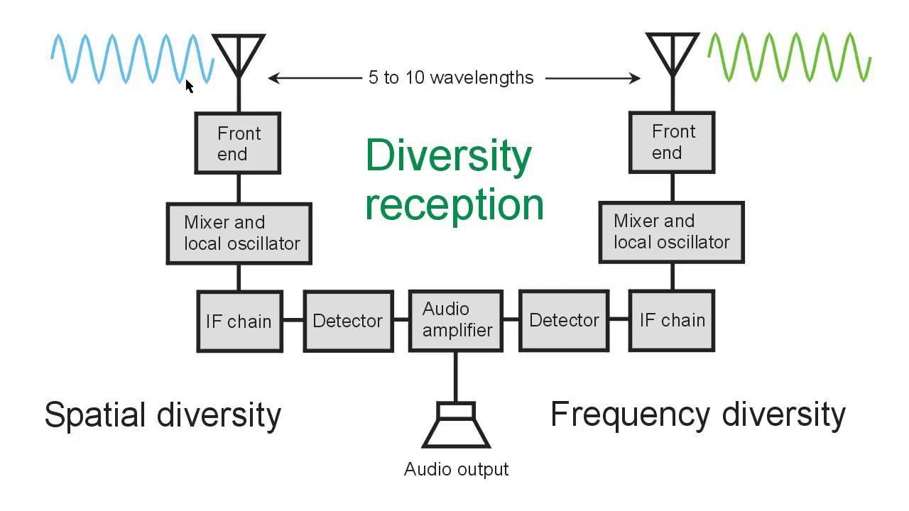 Afbeeldingsresultaat voor diversity reception