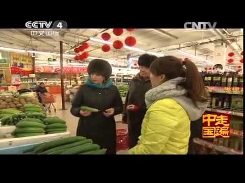 中国 特色 社会 授業